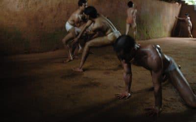 Die beste Yogamatte der Welt - ein Plädoyer für Mutter Erde